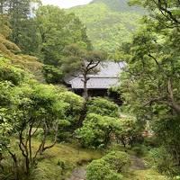 東急ハーヴェストクラブ VIALA 箱根翡翠で快適なホテルライフと箱根ヘルシーグルメの旅!