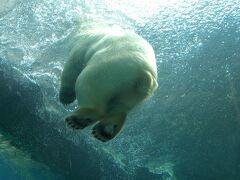 円山動物園で動物まみれ