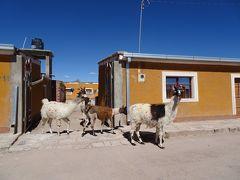 ボリビア旅行は高地トレーニング? 6日目・ウユニ南部巡り(オホ・デ・ペルディス~ウユニ)