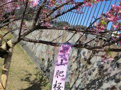 冬の堂ヶ島ニュー銀水③