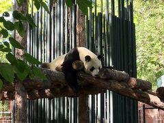 【中国紀行】初めての北京(4)  北京動物園/頤和園