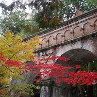 京都ぶらぶら旅〜2014年11月・紅葉