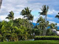 初めてのハワイ島 (夫婦還暦旅行第二弾) 5日目: ノンビリと