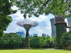 シンガポール散歩 1日平均25000歩