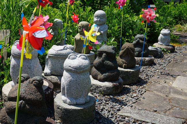 「丹波橋」を探して、伏見界隈をブラブラしてみました。<br />画像は、@勝念寺@丹波橋通り沿いです。<br /><br />過去の京都「橋」な駅散歩記<br /><br />関西散歩記~2018-2 京都・京都市伏見区編~「地下鉄くいな橋駅」<br />https://4travel.jp/travelogue/11441015<br /><br />関西散歩記~2018 京都・京都市伏見区編~その1「京阪観月橋駅」<br />https://4travel.jp/travelogue/11361822<br /><br />過去の京都・京都市伏見区散歩記~<br /><br />関西散歩記~2018-2 京都・京都市伏見区編~<br />https://4travel.jp/travelogue/11441015<br /><br />関西散歩記~2018 京都・京都市伏見区編~その2<br />https://4travel.jp/travelogue/11361823<br /><br />関西散歩記~2018 京都・京都市伏見区編~その1<br />https://4travel.jp/travelogue/11361822<br /><br />関西散歩記~2017-2 京都・京都市伏見区編~<br />https://4travel.jp/travelogue/11273413<br /><br />京都まとめ旅行記<br /><br />My Favorite 京都 VOL.5<br />https://4travel.jp/travelogue/11463030<br /><br />My Favorite 京都 VOL.4<br />https://4travel.jp/travelogue/11369230<br /><br />My Favorite 京都 VOL.3<br />https://4travel.jp/travelogue/11275410<br /><br />My Favorite 京都 VOL.2<br />http://4travel.jp/travelogue/11120777<br /><br />My Favorite 京都 VOL.1<br />http://4travel.jp/travelogue/10945390<br />