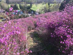 層雲峡の遅い春
