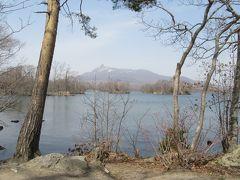 大沼公園の湖畔遊歩道を歩く