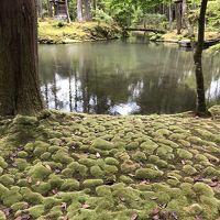 2019年05月 京都嵐山旅行3 嵐山の朝と苔寺