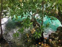 バヌアツのエファテ島一周ツアーの前半。