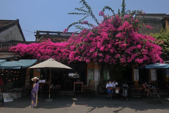 今年のゴールデンウイークは平成から令和に元号が変わるため平成最後の海外旅行となります。<br /><br />新しい時代も楽しい旅ができる事を祈ってベトナムに旅立ちました。<br /><br />ベトナムは2012年に統一縦断鉄道乗り鉄の旅でホーチミンからフエを経由してハノイまで旅行した時以来今回3回目の訪問となります。<br /><br />その時、ダナンからフエまで鉄道でハイヴァン峠を通過した際にいつかはダナンとホイアンにと思ってました。それから年月が経過しましたがやっと実現!<br /><br />当初の計画はフエ再訪と、ハノイからダノンまで片道鉄道で行く予定でしたが、観光を重視し往復飛行機に変更、よって鉄分はありませんが、ダナンとホイアンを中心にハノイを含めたB級グルメの旅となりました。<br /><br />第7回目はホイアンの5大名物料理(4大名物料理と言われる事もあります)を食べ歩きながらホイアン旧市内やアン・バンビーチを観光、至福の時間を過ごす事ができました。<br /><br />今回の旅の世界遺産<br />登録名:古都ホイアン<br />登録年:1999年<br />分類 :文化遺産<br /><br />-全日程-<br />◎が今回の旅行記<br />平成31年<br />4月27日(土) <br />下関8:00分発 (サンデンバス) 博多9:32分着 <br />福岡空港11:00分発 (JL310) 羽田12:40分着<br />羽田空港駅13:00分 (京急・京成)成田空港駅15:15分<br />成田空港18:25分発 (JL751)ハノイ22:40分着<br />4月28日(日) <br />ハノイ 8:00分発 (VN159)ダナン 9:20分着 <br />ダナン市内観光<br />4月29日(月) <br />ダナン 五行山観光 <br />4月30日(火) <br />ダナン観光<br />令和元年<br />5月1日(水) <br />ダナン13:00分発 (タクシー) ホイアン13:45駅<br />ホイアン半日観光   <br />◎ 5月2日(木)<br />ホイアン1日観光(5大名物料理めぐり)<br />5月3日(金)<br />ホイアン (タクシー) ダナン<br />ダナン 10:40分発 (VJ510) ハノイ 12:00分着<br />5月4日(土)<br />ハノイ市内1日観光<br />5月5日(日)<br />ハノイ 0:10分発 (LJ752) 成田空港7:15分着<br />成田空港8:15分頃発 (京成・京急) 羽田空港10:40分頃<br />羽田空港11:15分発 (JL267) 福岡13:05分着<br />博多 14:20分発 (サンデンバス)下関<br /><br />写真はホイアンの旧市街