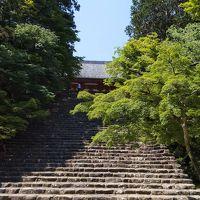 初夏の京都、お墓参りと高雄で青紅葉を愛でる旅