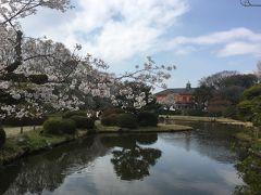 2019年3月 東京散策25 茗荷谷周辺で花見