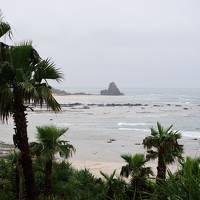 琉球と薩摩文化が交差する奄美大島