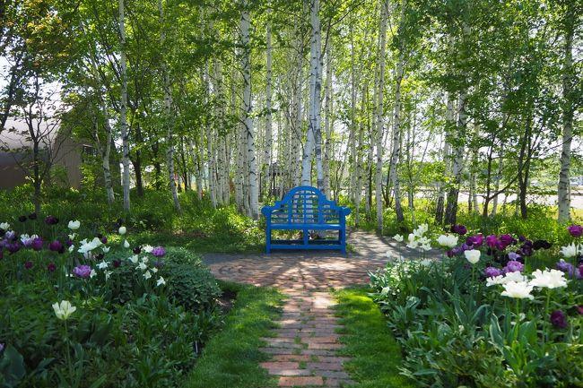 5月最後の土曜日。<br />真っ青な空が広がる、記録的な真夏日になった北海道。<br />こんな日は、上野ファームの移ろう季節の花々を見に、初めて行ってみました。<br />さらに、旭川は「クラフト家具」で有名なので、旭川デザインセンターも楽しんできました。