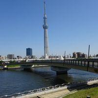 歴史ある神社と隅田川沿いを巡り浅草へ 駅からハイキング