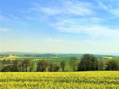 ☆春のプラハでモルダウを~♪.:*ハンガリー・スロバキア・チェコ周遊10日間 vol.39美しい菜の花の大地をクトナー・ホラへ♪