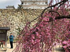 国宝・姫路城と庭園・好古園