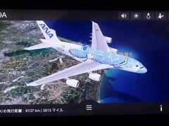 【2019海外】ANA A380 FLYING HONU で行くホノルル #01 ~就航初便の搭乗記~