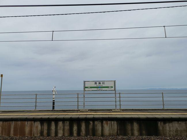 令和最初の家族旅行は新潟へ。<br />お天気にあまり恵まれませんでしたが、食べて飲んでの、のんびりとした旅になりました。