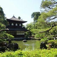 京都一泊旅〜2019年5月・御所の巻