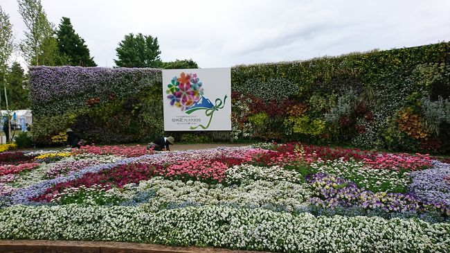 松本空港よこの信州スカイパーク展望台で、花フェスタ2019を開催していたので、花を見に訪問しました。ここは、素晴らしかったです。是非見に行ってください。
