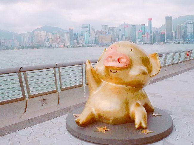 最近やたらとテレビで特集されている香港。<br />行ってみたいスポットが沢山あるし、食べたい物も色々。<br />初めての国なので、飛行機はキャセイパシフィック航空、ホテルはカオルーンシャングリラでリスクを最小限にしつつも、個人手配で出来る限りお安く楽しみました。