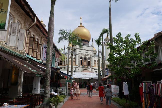 sukeco夫婦は今年2度目のシンガポール!。今回は、高齢のsukeco義母&sukeco両親が一緒の家族旅行。1日の歩数は少なめにという要望で、グルメ&カジノ遊びがメインで観光はほとんどなし旅になっちゃいました(笑)。滞在中は、みんなでワイワイと賑やかに過ごせて本当に良かった~。帰国後の体調が心配でしたが元気いっぱいのようで一安心。ちなみにsukeco夫婦は風邪を・・・あはは(涙)。とにかく、想い出に残る旅になったと喜ばれたので、ホッとしています♪。今回は、「しっかり朝食を食べた後は、定番の「サルタンモスク」へ!」編です♪。<br /><br /> <飛行機><br /><br />   JAL 羽田=シンガポール プレミアムエコノミー<br /><br /> <ホテル><br /><br />   4/25~ ビレッジホテル セントーサ<br /><br />   4/27~ アンダーズ シンガポール<br /><br /> <br /> <スケジュール><br /><br />   4/25 羽田空港に集合、出国後ラウンジへ、JALでシンガポールへ、ラージタクシーでホテルへ、「ビレッジホテル セントーサ」に到着、「中環 Central Hong kong Cafe」でディナー<br /><br />   4/26 「風水イン Feng Shui Inn」でランチ、「マーライオン」を見学、「シロソビーチ」散歩、「トーストボックス」でディナー、「レイク・オブ・ドリームス」ショー鑑賞<br /><br />   4/27 「Native Kitchen」で朝食、ホテルをチェックアウト、タクシーで「アンダーズ シンガポール」へ、チェックイン、「マーライオンパーク」へ、「コールドストレージ」でお買い物、「nana's green tea」でランチ、ショー「スペクトラ」を鑑賞、「レイン・オキュルス」鑑賞、「BEANSTRO」でディナー<br /><br />   4/28 「Alley on 25」で朝食、「サルタンモスク」見学、「ハジ・レーン」散歩、「ムスタファセンター」でお買い物、