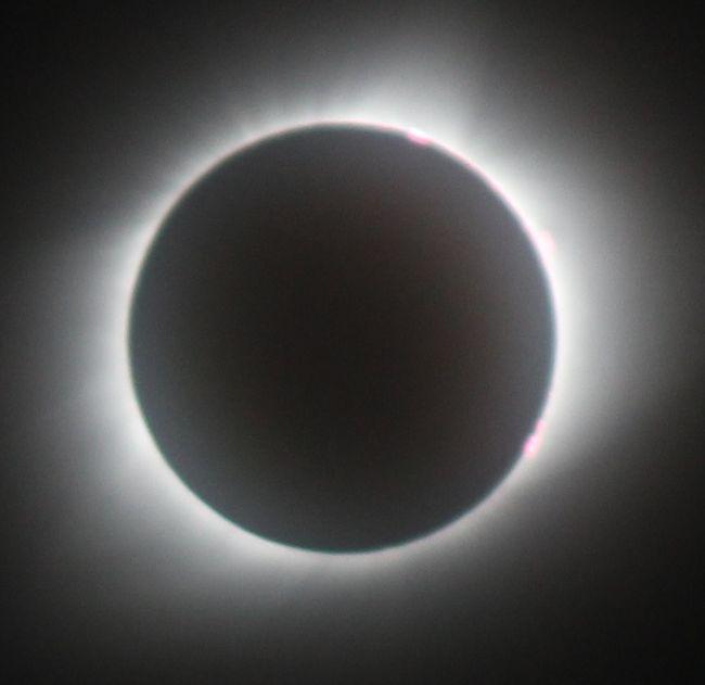 8月21日にアメリカを横断する皆既日食を見るのを軸に、シカゴ・カブスの試合観戦、ライトが設計した建物の見学もしてきた