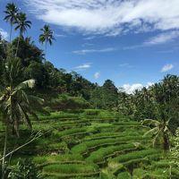 2017年GW バリ島ウブドの旅 ⑥ 最終日はライステラスと世界遺産を堪能