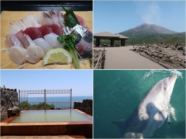 観光・郷土料理・温泉をテーマにした今回の鹿児島旅行。<br /><br />最終日は朝5時半に起床、ホテルから歩いて鹿児島市魚類市場へ行き『市場食堂』で新鮮な魚の幸を堪能してから桜島フェリーで桜島へ。島内を路線バスで巡りながら、古里温泉『桜島シーサイドホテル』で錦江湾を望む露天風呂を貸し切り状態で満喫してきました♪<br /><br />往路(5/22):スカイマーク <br />07:45/羽田 → 09:35/鹿児島 11,090円<br /><br />復路(5/23):ジェットスター<br />鹿児島/19:50 → 成田/21:40  7,760円<br /><br />宿泊:ホテル法華クラブ鹿児島<br /><br />■みんなの桜島<br />http://www.sakurajima.gr.jp/