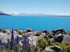 海外一人旅第17段はニュージーランドの大自然に癒される旅 - 5日目(テカポ編)