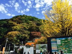 2015年11月 紅葉を見に高尾山ハイキング