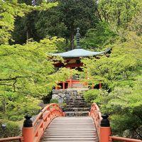 京都平成05 醍醐寺d 金堂-観音堂-弁天堂 ☆新緑の境内に入り御朱印を戴く