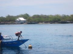 真夏のえらく暑いセブに行きました。いやホントに暑かったですが、ヒルトガン島沖の海の青さに感激でした。