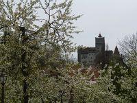 ドナウ川クルーズ前 ルーマニア シナイア、ブラショフ、ブラン城への一日ツアー