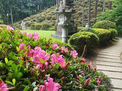 【青梅】七国山薬王寺 来年の下見かな。