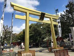 愛知名古屋、IKEA長久手、岐阜ドーミーインを楽しむ。07