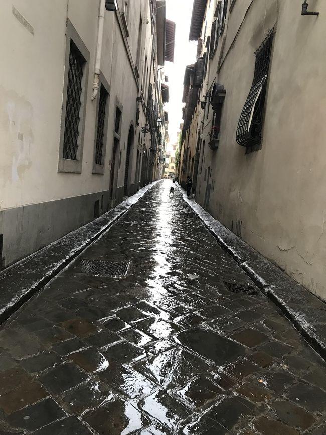 表紙の写真・雨に煙る石畳の路地にワンちゃん^_^こんな風景も素敵なのですが、数日の観光では雨は嫌われてしまいますよね^^;<br />私は前回と今回も天候に恵まれてラッキーでした。<br /><br />☆☆新型コロナウイルスで落ち着かない日々です。<br />北イタリア辺り・・2017年の一人旅でベネチア~ミュンヘンまでの路線を利用しましたが、一時停止というニュースも・・どうなのでしょうか?<br />早く収束してほしいと切に願っています。<br /><br />2019・5月14日(火)15日(水)2日間フィレンツェに滞在した折で人っ子一人いない早朝・6時頃の大聖堂などの写真を写しました。<br /><br />2017年9月の訪問時の旅行記をたくさん編集したので、今回はサラリとスルー予定でしたが、観光客の姿が無い風景も残そうと思います。<br /><br />が、ここでアクシデント・・私は帰国後に暇を見つけて、4トラの旅行記を作成するのに、写してきた写真を全て載せてから消去していく方式を取っています(明らかに変な写真はのぞいて)<br /><br />ところが、編集途中にPCが突然、壊れてしまってデーターが消失。<br />何時も夫がバックアップを取ってくれるのですが、忙しくて後回しになっていたのに、私が早々にカメラのメモリーを消してしまったのです。<br />何を思ったのか5枚ほどあるメモリー整理を・・・^^;<br />間が悪い時ってこんなものですね!!<br /><br />それで、この前半のみ生き残った写真のみになりました。<br />ヴェッキオ橋から対岸をブラブラ歩いて、上流のグラツィエ橋を渡りサンタクローチェ教会まで行った風景も写したのですが、長いので後日にとおもって中断中で、その部分はアップしていなくて消失(涙)<br /><br />でもね!スマホの映像は残しておいたので、後半の20日(月)に1泊した雨のフィレンツェの風景が、少し残っていて備忘録になりました。<br /><br />余分な写真も入れましたので132枚・・長いですね^^;<br /><br /><br /><br />
