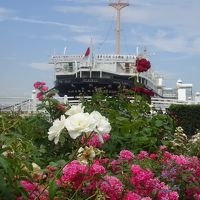 横浜駅から横浜山手へ シーバス、山下公園、フランス山、港の見える丘公園