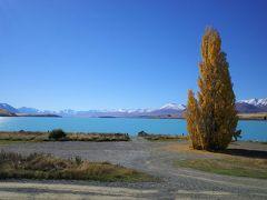 5月のニュージーランド・テカポ 紅葉と湖と星空