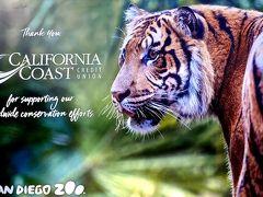 2019年:GW6日目:世界最大規模サンディエゴ動物園&西海岸LA&サンディエゴの旅&香港:最初で最後の公休10連休(8泊10日):家族で!