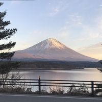 やっぱり富士山だね! 山梨日帰り旅 新倉山浅間公園と下部温泉