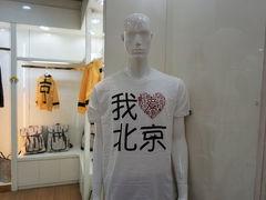冬の北京・再訪ひとり旅 ダイジェスト動画