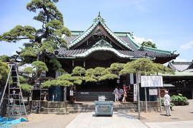 東京葛飾散策・・寅さんのふるさと柴又帝釈天をめぐります。