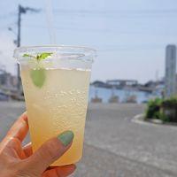 「みさきまぐろきっぷ」で行く、三浦半島 日帰り遊び旅。