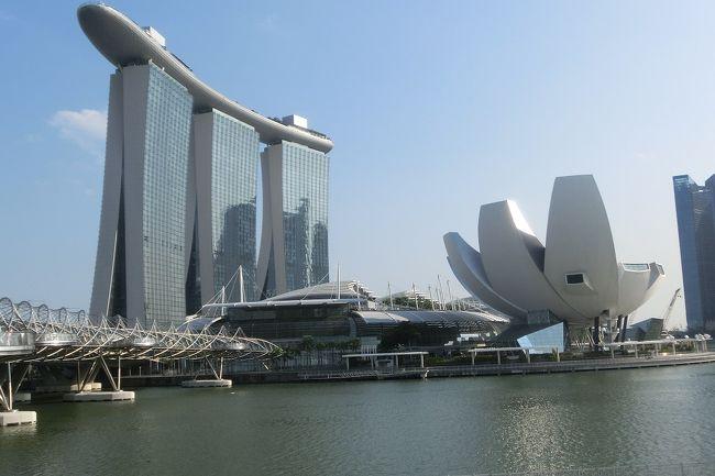 あっという間のシンガポールの旅<br />かなり個人的にも満足できた旅になりました。<br /><br />あとは日本に帰るだけでしたが、最後に軽く旅のまとめなんぞしたいと思います。<br /><br />------------------------------------------------------------<br /> 初日    チャンギ空港 17:45着<br /> 2日目  自由行動<br /> 3日目  自由行動<br /> 4日目  自由行動<br /> 5日目  自由行動<br />★最終日   チャンギ空港 09:20発 <br />------------------------------------------------------------