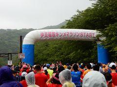 伊豆稲取 キンメマラソンの応援と下田観光の旅
