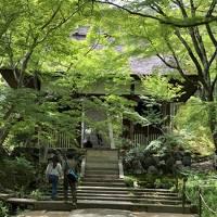 初夏の奈良・京都2019
