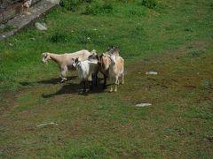 2019年5~6月国々の中で生き抜くブルガリア縦断横断6 リラ村を街歩きしてから僧院へ