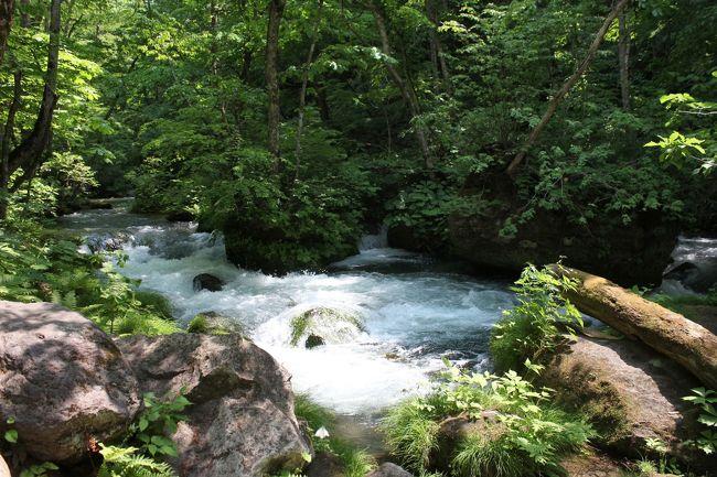 2019夏の青森3泊4日★2 奥入瀬渓流を散策